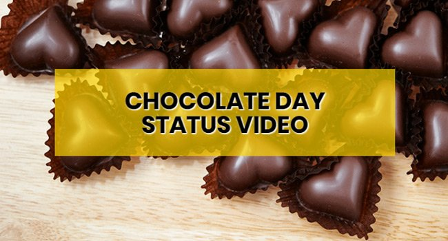 chocolate-day-status-video-download-free