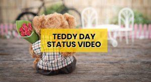 happy-teddy-day-whatsapp-status-video-download