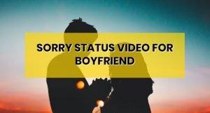sorry-whatsapp-status-video-for-boyfriend-download