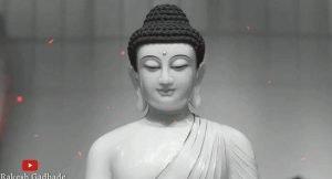 gautam-buddha-whatsapp-status-video