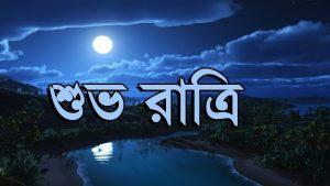Bengali Good Night Whatsapp Status Video