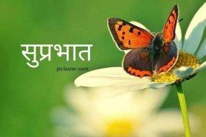 Marathi Good Morning Whatsapp Status Video