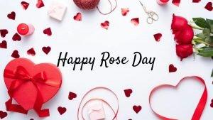 Rose Day Whatsapp Status Video