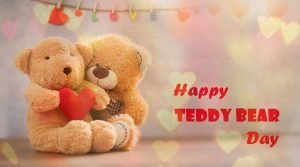 Teddy Day Whatsapp Status Video