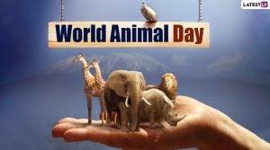 World Animal Welfare Day 2021 Whatsapp Status Video